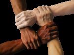 Trade Association or Alliance